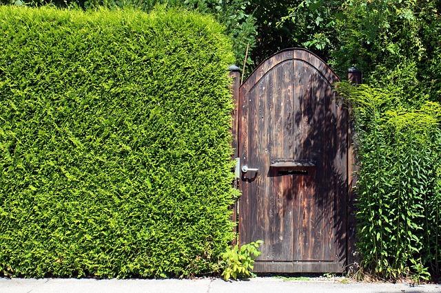 4 Geniale Tipps Fur Mehr Privatsphare Im Eigenen Garten
